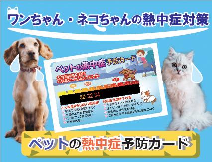 ペットの熱中症予防カード